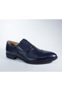 Туфли мужские демисезонные B276-18D